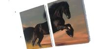 tablou200x100